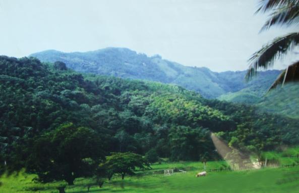 lomamiranda