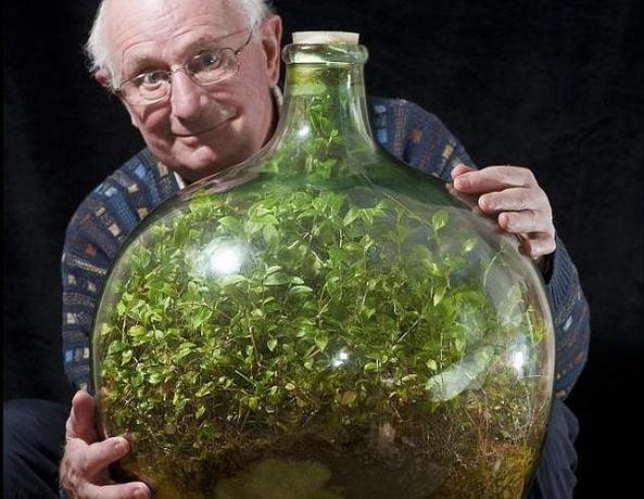 jardin-botella