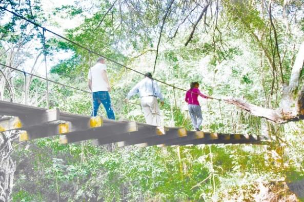 El Jardín Botáncio es un espacio ideal para la preservación de especies arbóreas en peligro. - See more at: http://www.elcaribe.com.do/2015/03/10/jardin-botanico-una-incipiente-idea-que-toma-forma-santiago#sthash.uiRnsC8V.dpuf