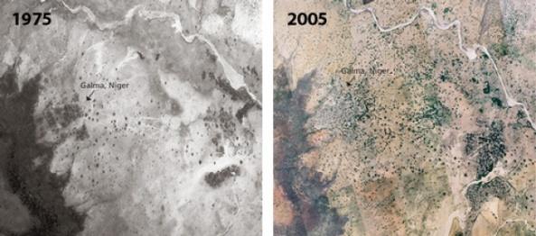 desierto-Sahel-Satellite