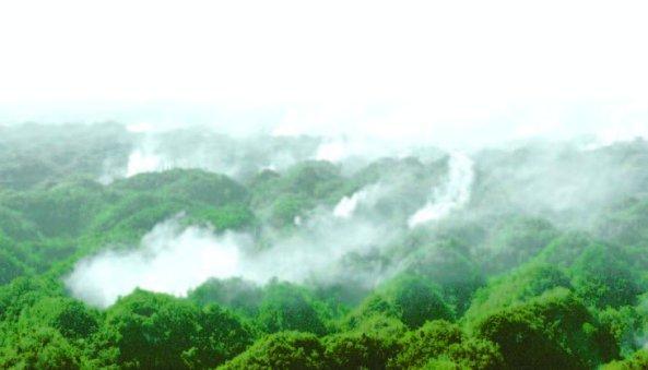 Indican que la producción agrícola carece de agua y solicitan a Medio Ambiente regular la zona.