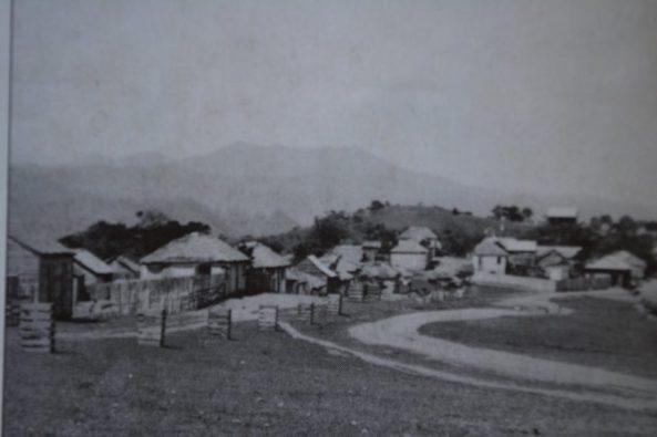 Entrada al pueblo, hoy avenida Manuel Arturo Tavares Julia, el cual sembró los samanes que se ven en los canastos, 1927.
